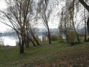 Téli futás az OMSZK-i tó körül